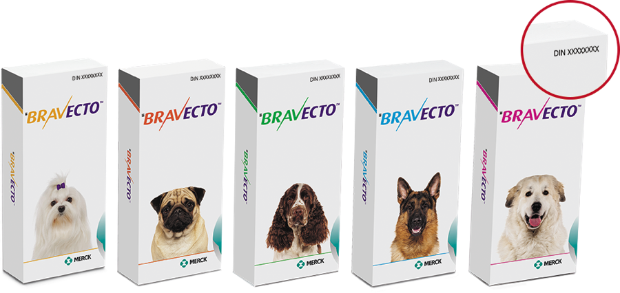 photo regarding Bravecto Printable Coupons identified as I am a canine proprietor